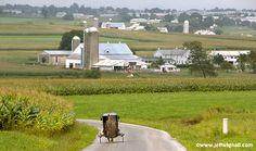 Amish Farm - Lancaster PA