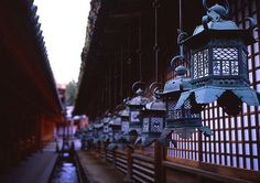 https://flic.kr/p/7GBK4J | Nara, Kashima Shrine, Lanterns