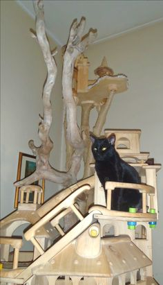 DomusfeliS - special playzones for cats - sculptures for cats - Unique pieces for unique cats, untreated precius wood: plum, apricot, seasoned poplar, birch, bamboo, wild oak and piracanta. #catcastle #castlecat #luxurycatcastle #cattower #cattree #cattoy #catenclosure #catfrendlyhpme #catfrendly #catscratchforniture #petdesign