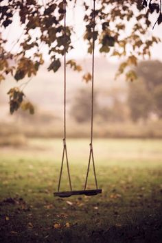 I love swings :) (fiction) Swing from a tree near old cabins along the springs at Stillwater Springs. X