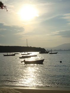 Araça beach, Porto Belo, SC, Brazil