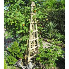 Timber Wooden Garden Trellis Obelisk Climbing Frame