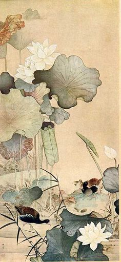 art Japanese painting KAWABATA Gyokusho(川端 玉章 Japanese, and Waterfowls) 1899 Japanese Painting, Chinese Painting, Chinese Art, Koi Kunst, Art Lotus, Art Chinois, Illustration Art, Illustrations, Botanical Illustration