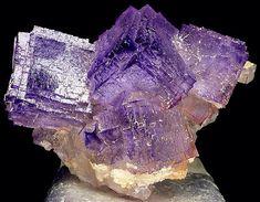 Fluorite | #Geology #GeologyPage #Mineral Locality: Ojuela Mnie, Mapimi, Durango, Mexico Size: 6.5 x 5.0 x 4.0 cm Photo Copyright © Spirifer Minerals Geology Page www.geologypage.com