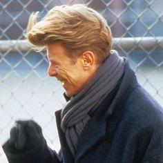 David Bowie, The Linguine incident.