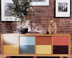 Forget the doggie bed. In fashion designer Lela Rose's Tribeca apartment, Stitch, her Norwich terrier, is right at home on an Eames-style cabinet crafted by the designer's grandfather.  %0A  - ELLEDecor.com