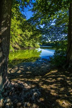 pond leading to the Long Island Sound from Caumsett State Park, Huntington, NY (08/23/2016)