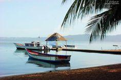 Playa Maigualida Municipio Bolívar • Estado Sucre