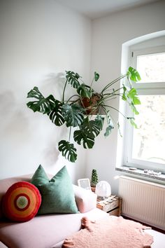 Alex Bender home von Interior Design Tips, Interior Decorating, Homer Decor, Green Zone, Building Furniture, Modern Cottage, Condo Living, Interior Garden, Design Blog