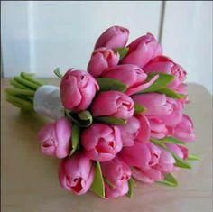 Ramo de Tulipanes rosa fucsia