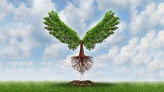 rodzice powinni dać dziecku korzenie i skrzydła goethe. Korzenie, żeby miały gdzie wracać, skrzydła żeby mogły od nich odlecieć.