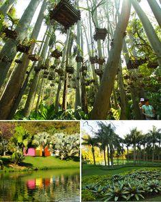 Inhotim caracteriza-se por oferecer um grande conjunto de obras de arte, expostas a céu aberto ou em galerias temporárias e permanentes, situadas em um Jardim Botânico. Brumadinho-MG e fica aproximadamente 60km de Belo Horizonte.