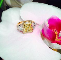 #jewelry #finejewelry #diamonds #yellowdiamond #ring #luxury #MartinKatz #MartinKatzJewels
