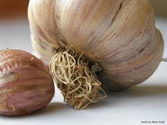 Presidio Slow Food Friuli Venezia Giulia: alla scoperta dell'aglio di Resia