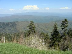 Great Smoky Mountains National Park 2013