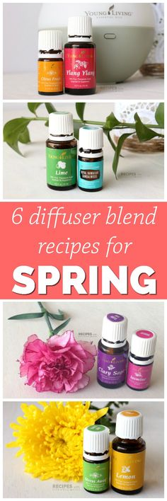 6 Best Spring Diffuser Blend Recipes featuring bright citrus, clean herbals, and sweet floral aromas from RecipeswithEssent. Young Living Oils, Young Living Essential Oils, Infused Oils, Essential Oil Diffuser Blends, Diffuser Recipes, Lemon, Bright, Diy Products, Beauty Products