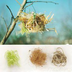 Bird Nest Helper