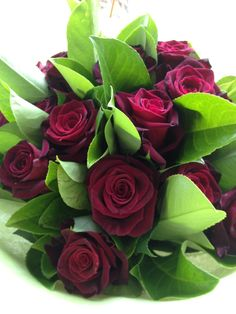 From £35 Black Barcara red rose bouquet