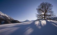 Winterparadies, Achenkirch, Achensee, Winterurlaub, Loipe, Skipiste, Hüttenabende