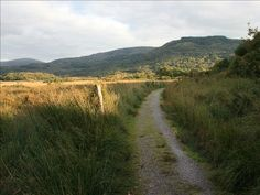 Kerry Way - on to Lord Brandon's Cottage