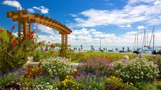 Tagore Promenade, the greenest street at Lake Balaton Nobel Prize In Literature, Green Street, Main Attraction, Main Street, Dream Vacations, Cover Photos, Trees To Plant, The Locals, Places To Visit