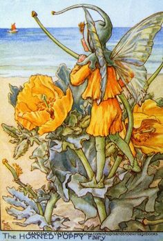 Fairy: The Horned Poppy Fairy, by (CMB) Cicely Mary Barker, 1948