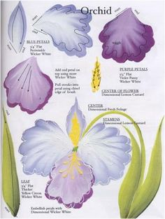 Donna Dewberry One Stroke 50 Flowers DVD Kit - Click Image to Close