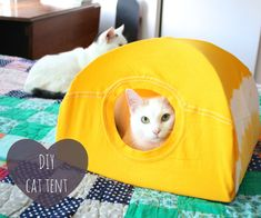 Your pet is like a member of your family, and you want to treat them that way. Unfortunately, with the prices of pet beds it can be hard to give your best. Try the No-Sew DIY Cat Bed to create something completely adorable for your pet. Diy Old Tshirts, Old T Shirts, Lit Chat Diy, Diy Cat Tent, Diy Tent, Animal Projects, Pet Beds, Diy Stuffed Animals, Cat Toys