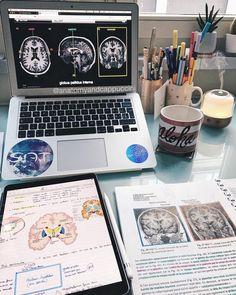 Medical school motivation life 19 ideas for 2019 Studyblr, Study Organization, School Study Tips, Student Motivation, Study Hard, Medical School, Medical Students, Student Life, Med Student