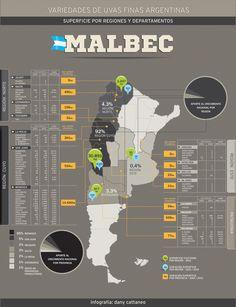 Mapa Argentino de Uvas Finas y Semifinas. Superficie por Regiones y Departamentos