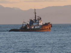 Tugboat off Davis Bay
