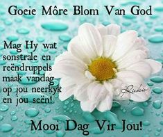 Good Morning Wishes, Good Morning Quotes, Lekker Dag, Sleep Quotes, Goeie Nag, Goeie More, Afrikaans, Prayers, Inspirational Quotes