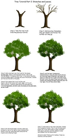 Tree tutorial Part 2 by Tephra76.deviantart.com on @deviantART