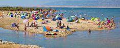 Nin nyaralás homokos strandon? Nin Horvátország egy igen különleges részén helyezkedik el. Ismerjük meg a helyi tengerpartokat és nyaralási lehetőségeket. Camel, Park, Nike, Animals, Animales, Animaux, Camels, Parks, Animal