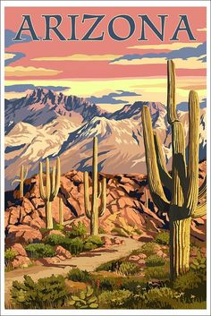 Arizona Desert Scene at Sunset (12x18 Art Print, Wall Decor Poster)