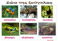 Animal Crafts, Kids And Parenting, Education, School, Blog, Animals, Greek, Animales, Animaux