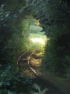 train tracks through a tunnel of leaves~~ Some paths are so beautiful to behold Magic Places, Places To Visit, Beautiful World, Beautiful Places, Under The Tuscan Sun, Old Trains, Train Tracks, Abandoned Places, Railroad Tracks