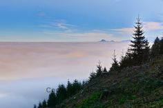 Nebelpracht von oben Mountains, Nature, Photography, Travel, Mists, Water, Voyage, Viajes, Traveling