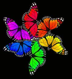 Oooooohhhhhh my the color wheel of the butterfly!! Such beauty, such sync it…