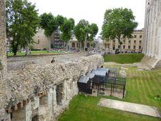 Ravens Tower of London