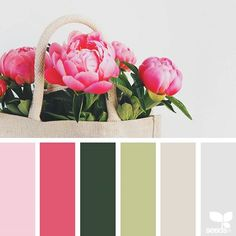 today's inspiration image for { peony palette } is by @designangel ... thank you, Louise, for another wonderful #SeedsColor image share!