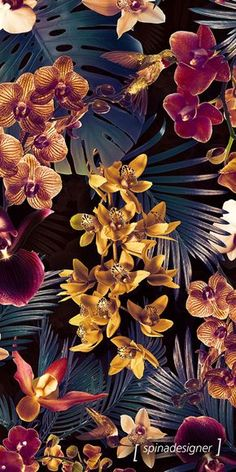 Walter Spina | Estampa Tropical Orchid (Dark version) Mais