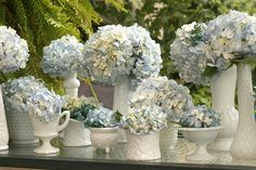 milk glass and light blue hydrangea. get the milk glasses from thrift stores