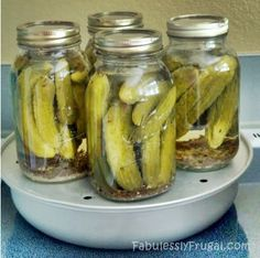 pickles on canner 2