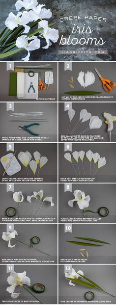 DIY Crepe Paper Iris Flower Tutorial - www.LiaGriffith.com #PaperFlowerTutorial #CrepePaperRevival #CrepePaperFlowers #DIYPaperFlower #PaperFlowerDIY #PaperIris #PaperArt