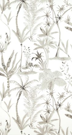 BN Designed For Living behang 17661 te koop bij Decorette Leiderdorp Green Leaf Wallpaper, Special Wallpaper, Fern Plant, High Quality Wallpapers, Living Styles, Blue Quilts, Tropical Leaves, Floral Style