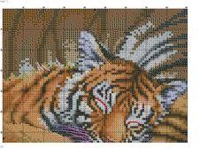 un tigre dormido