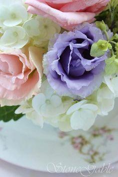 Rosas suaves