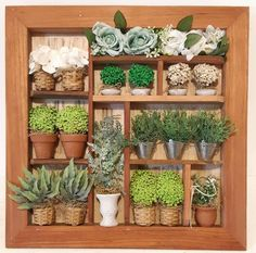 Cactus, Shadow Box, Plants, Gardening, House, Home Decor, Wall Decor Crafts, Wooden Crafts, Craft Ideas