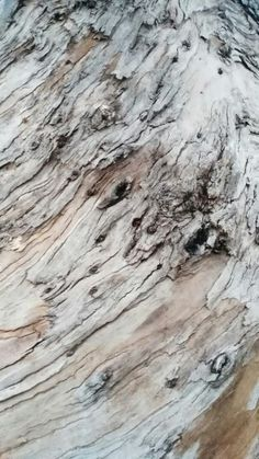 Vigo en Pontevedra, Galicia Hardwood Floors, Flooring, Texture, Walks, Wood Floor Tiles, Surface Finish, Wood Flooring, Floor, Pattern